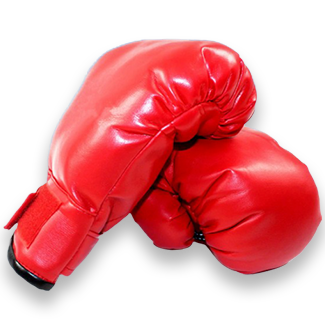 Classic Red Boxing Gloves
